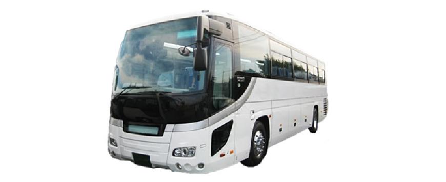 【バス情報】大型バスについて