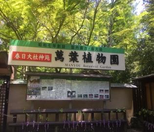 萬葉植物園.jpg