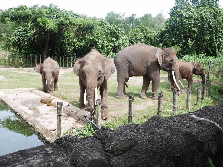 象②.jpg