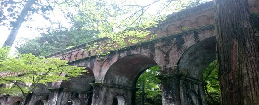 【京都】緑を愛でるぼっち寺社巡り①