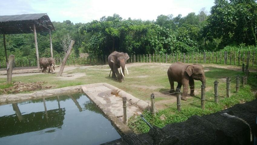 象①.jpg